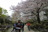 Save 6%: Tokyo by Bike: Skytree, Kiyosumi Garden and Sumo Stadium.