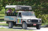Save 10% Off Jeep Safari Adventure Tour from Montego Bay