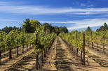 Save 10%: Wine Country and Muir Woods Small-Group Tour from San Francisco