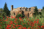 Save 10%: Assisi and Orvieto Day Trip from Rome