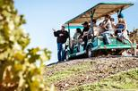 Save 10%: 2-Day Muir Woods and Wine Country Tour from San Francisco