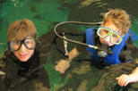 Save 13% Off Swim with the Fishes at The Florida Aquarium in Tampa Bay.