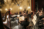 Save 10% Off Danube Symphony Orchestra Cimbalom Concert with Optional Danube River Dinner Cruise