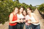 Save 10%! Santiago Super Saver: Concha y Toro plus Vina del Mar and Valparaiso Day Trip