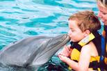 Save 10%! Punta Cana Dolphin Encounter