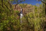 Save 10%! Litchfield National Park Day Tour from Darwin