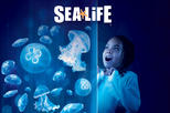 Save 11%! SEA LIFE Charlotte Concord Aquarium Admission