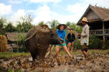 Save 10%! 13-Day Thailand and Laos Adventure Tour from Bangkok