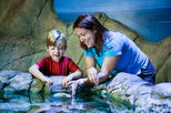 Save 20%! SEA LIFE Charlotte Concord Aquarium Admission Ticket
