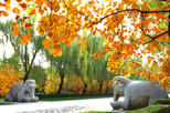Save 15%! Private Beijing Day Trip: Mutianyu Great Wall and Ming Tombs