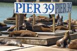 PIER 39 Attraction Pass From $89.99 USD